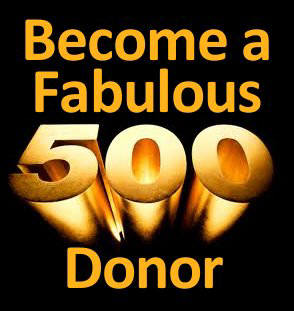 Fabulous 500 Donor